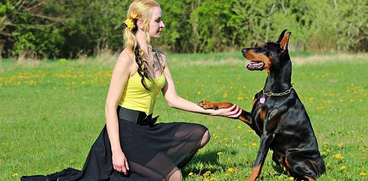 ragazza con cane durante un'esposizione canina