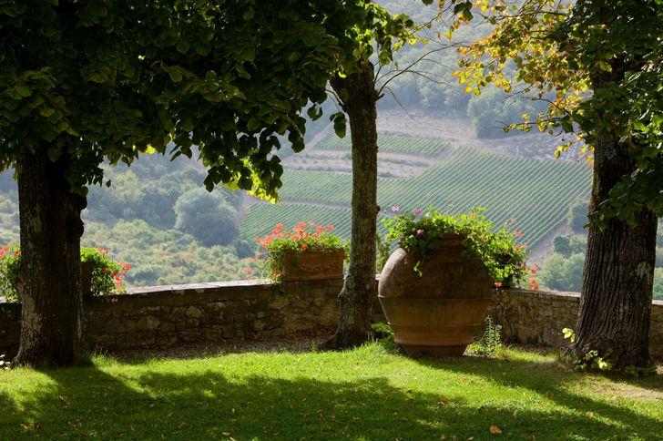 Castello di Meleto foto 5