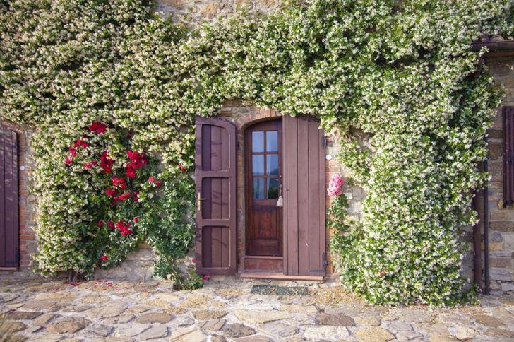 Villa Montelucci foto 5