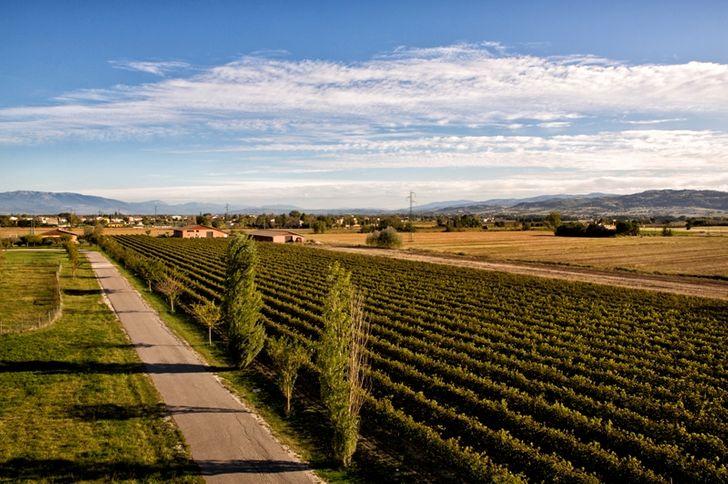 Valle di Assisi Hotel & Spa Resort foto 7