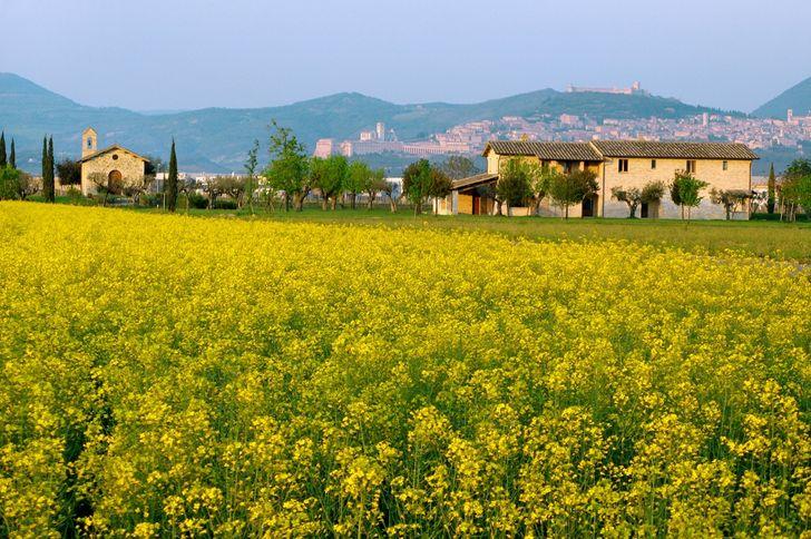 Valle di Assisi Hotel & Spa Resort foto 5