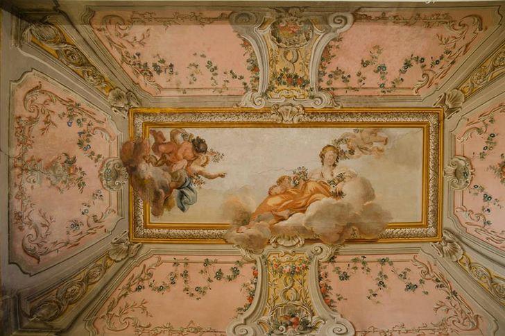 Palazzo Falletti foto 3