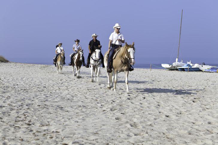 Horse Country Resort Congress & SPA foto 7