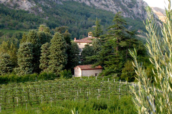 Monte Spada Agri Culture foto 3