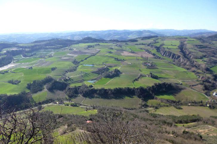 Monte Spada Agri Culture foto 14