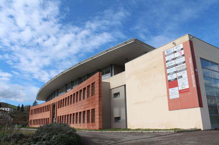 Polo Lionello Bonfanti foto 2