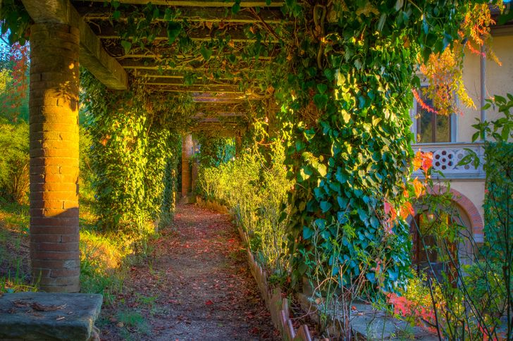 Villa La Torrossa foto 15