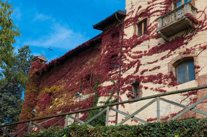 Castello Feudale Ai Nove Merli foto 7