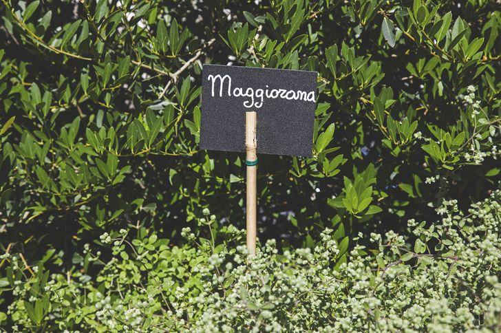 Fiore Cucina Flexiteriana foto 4