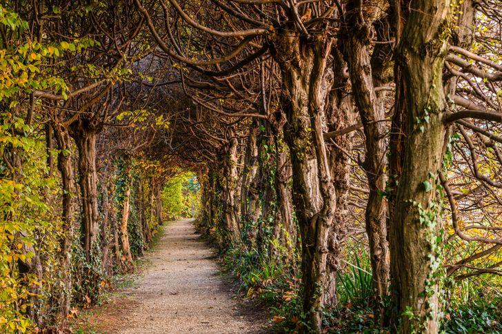 Parco della Filandetta Bortolomiol foto 7