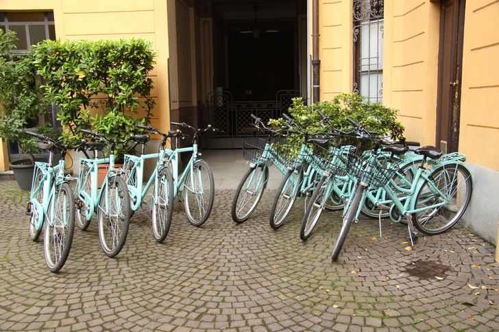 SpiciulArt Bike & Tour photo 1